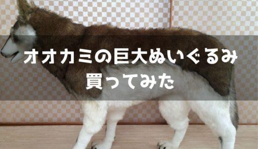 オオカミの巨大ぬいぐるみ(ハンサ社)を買ったので詳細をレポート